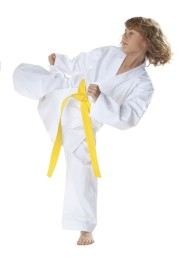 Karate Gi, DAX Beginner, white